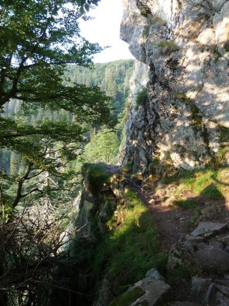 Passage dans le Sentier des Roches
