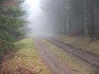 The Mist ?