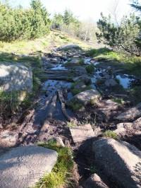 GR5 - Passages humides